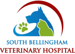 South Bellingham Veterinary Hospital